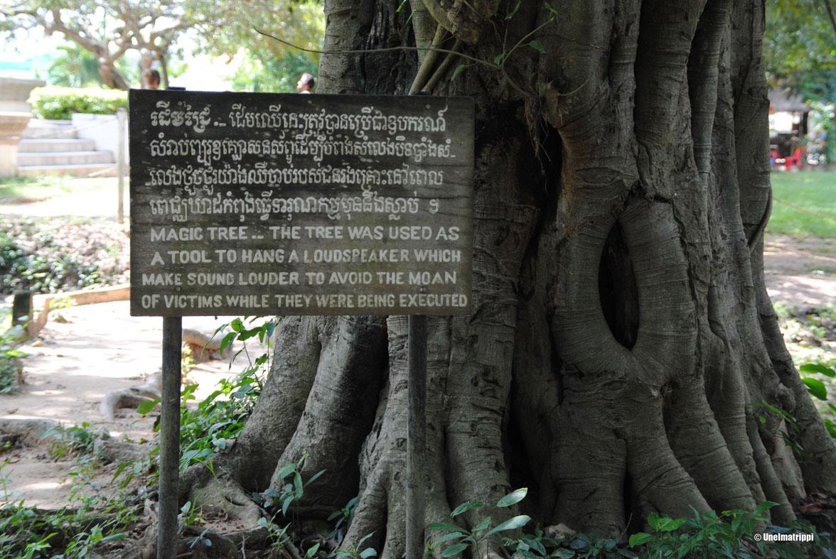 Artikkelikuva - Kuoleman kentät, Phnom Penh, Kambodza