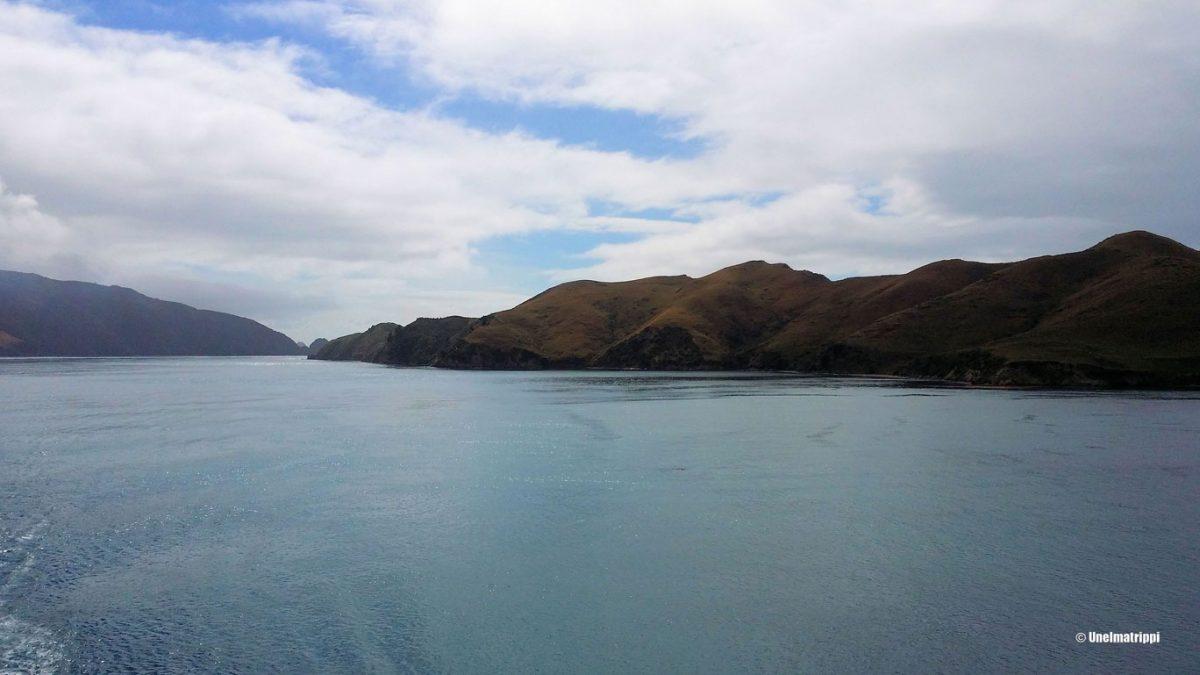 Ensikosketus Uuden-Seelannin Eteläsaareen