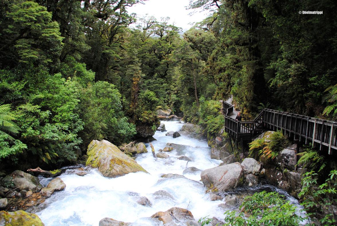 Autolla Uudessa-Seelannissa: Milford Sound Highway