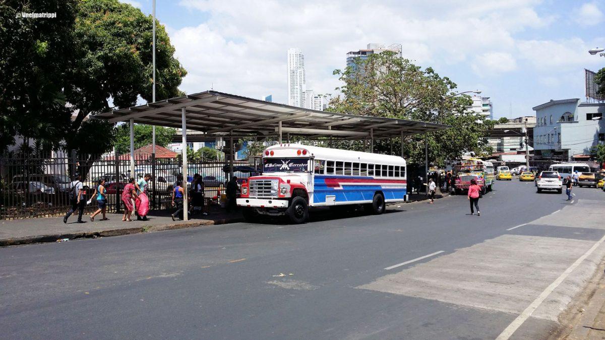 Artikkelikuva - Bussi Panama Cityssä