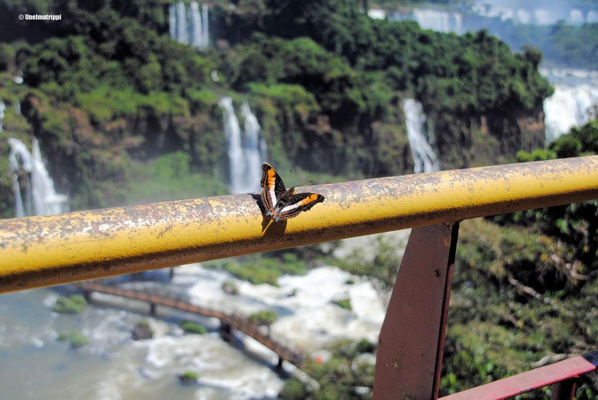 Iguassun putouksilla Brasiliassa