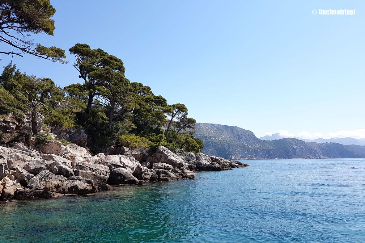 Lokrum – saaritauko Dubrovnikin hälinästä
