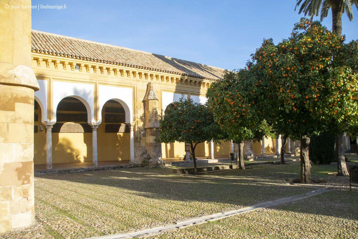 Córdoba ihastuttaa upeilla rakennuksillaan ja pienillä kujillaan