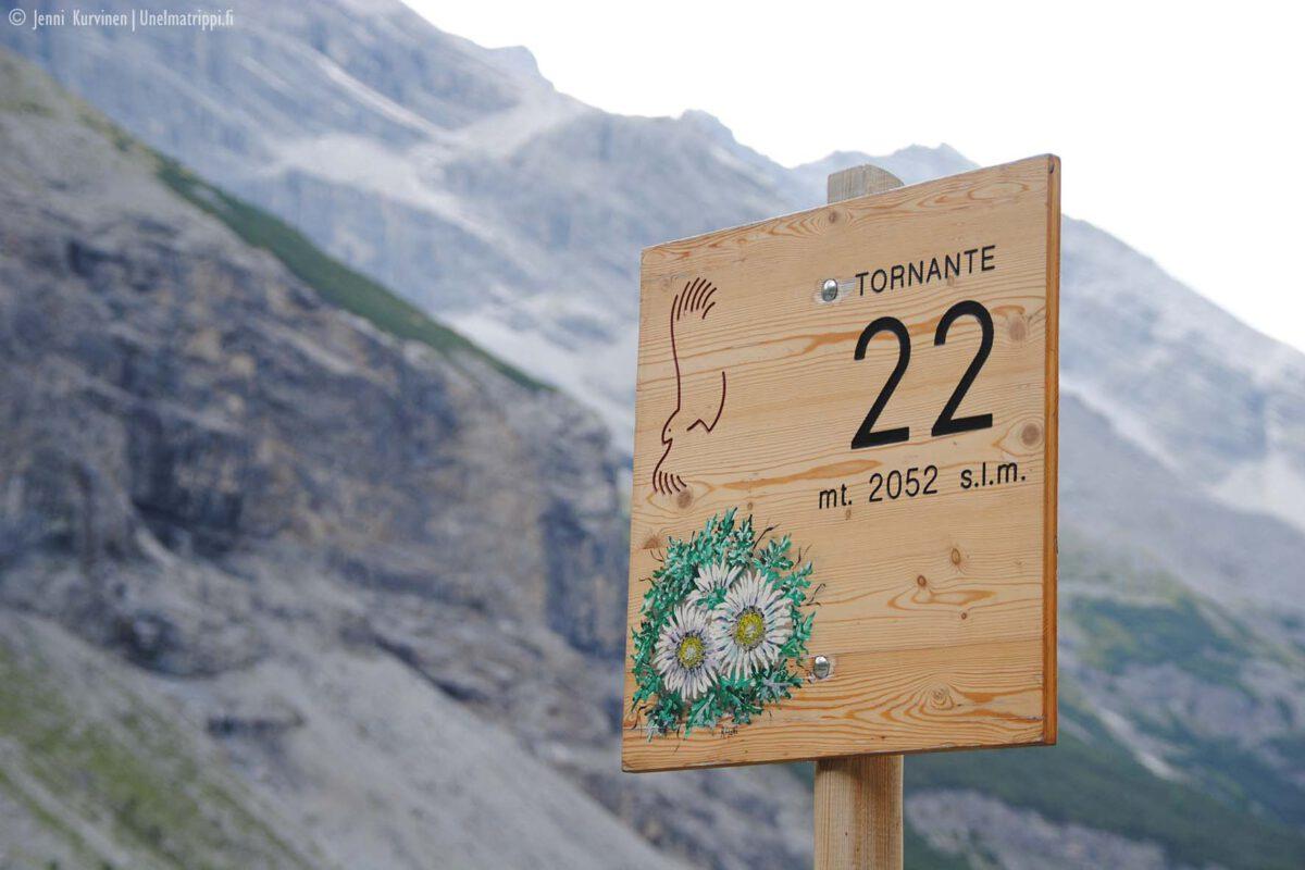 Autolla Alppien yli: Stelvion solan vuoristoreitti